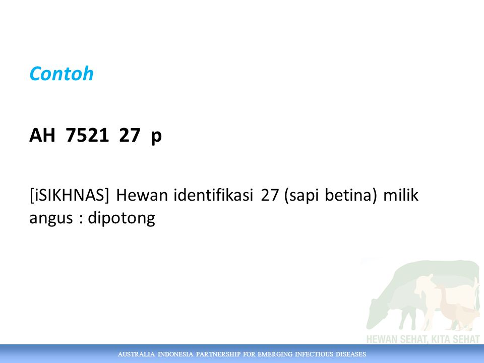 Contoh AH 7521 27 p [iSIKHNAS] Hewan identifikasi 27 (sapi betina) milik angus : dipotong